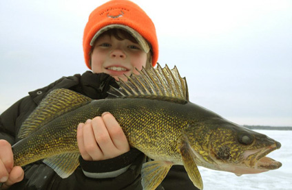Lake St.Clair Walleye