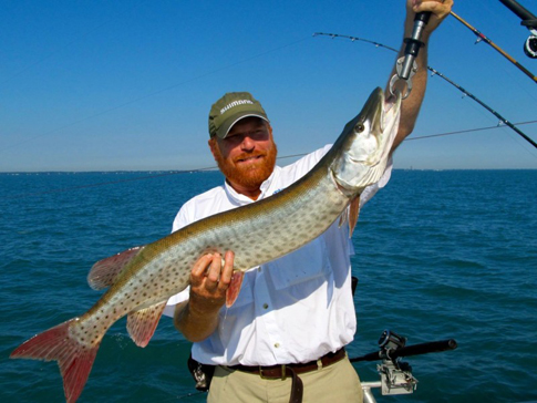 lake st clair charter fishing index by professional